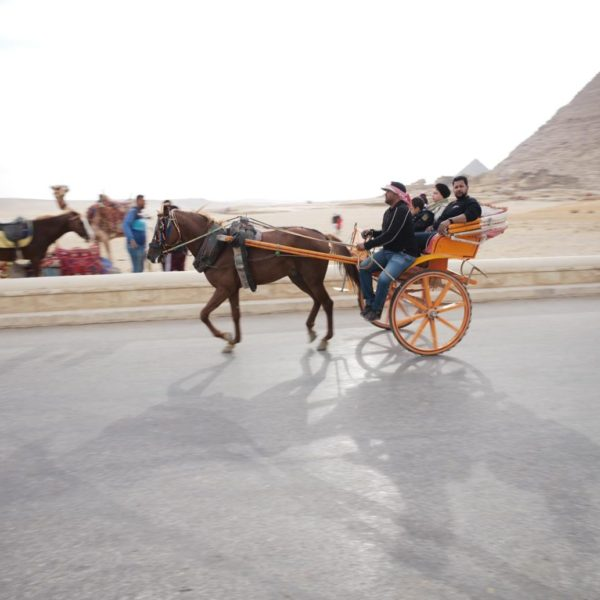 egypt tour packages from us